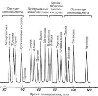 Хроматографические тесты и исследования